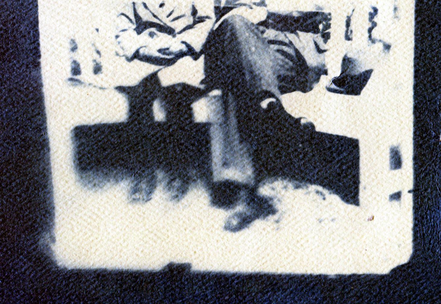 Jennifer Michie cyanotype print