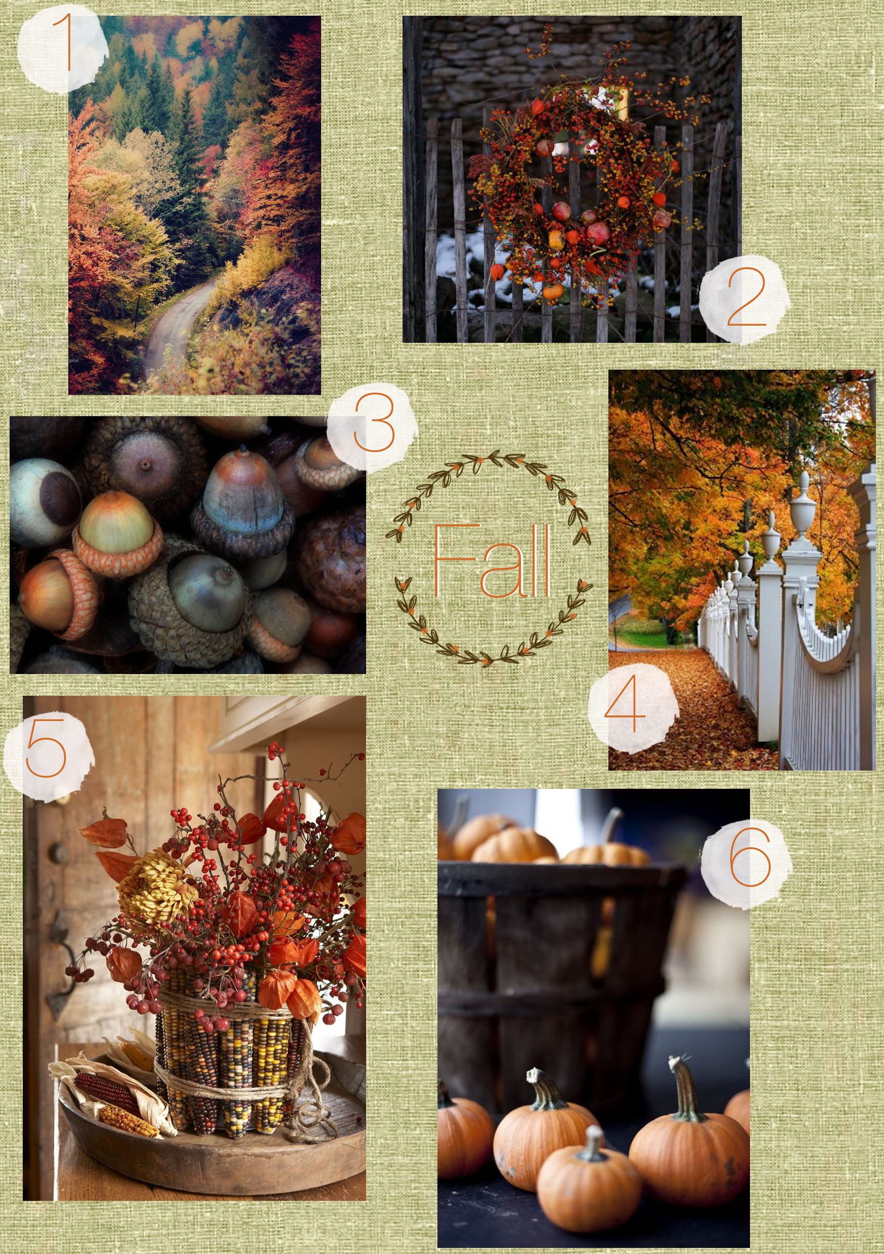 Fall Pin Board
