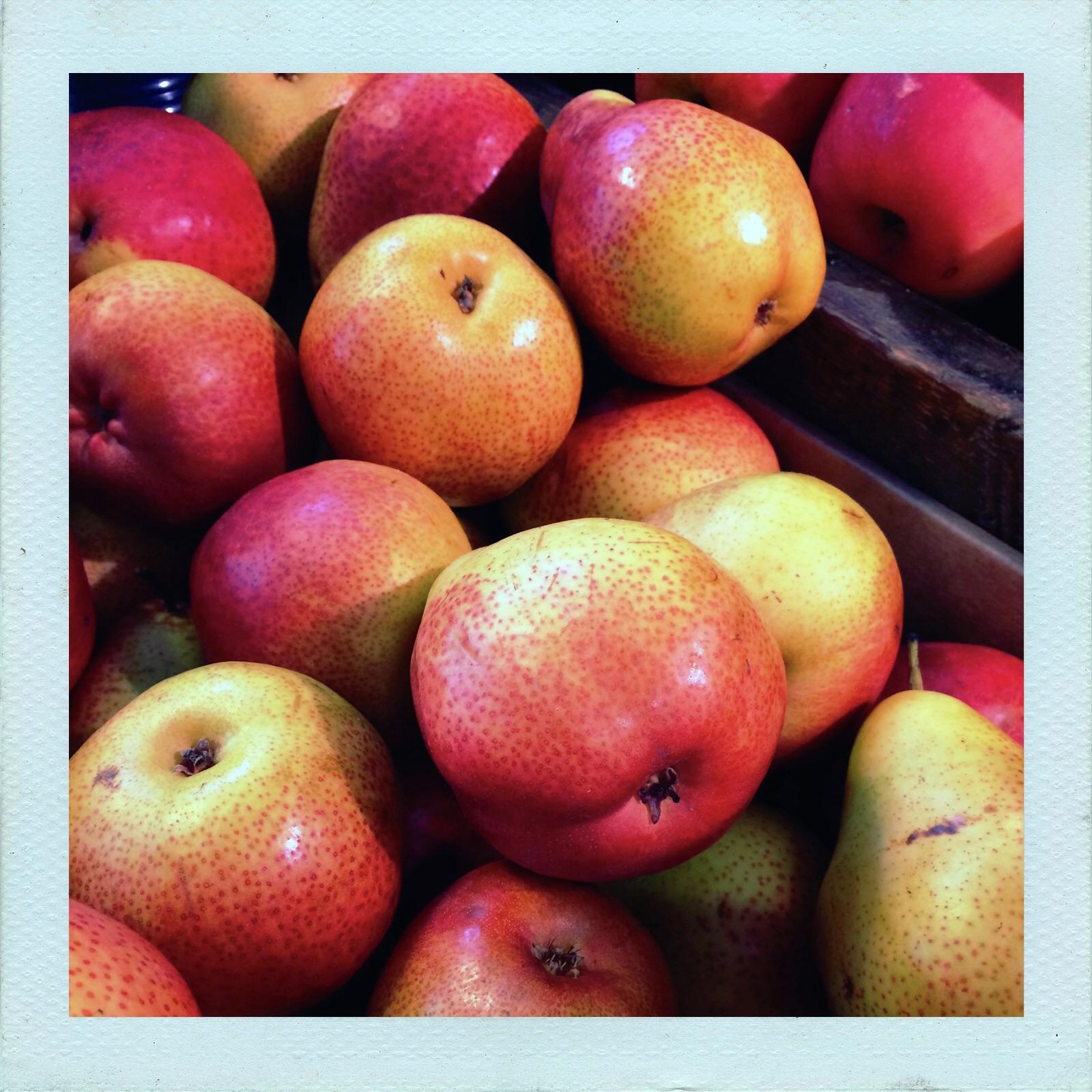 Jennifer Michie Pears