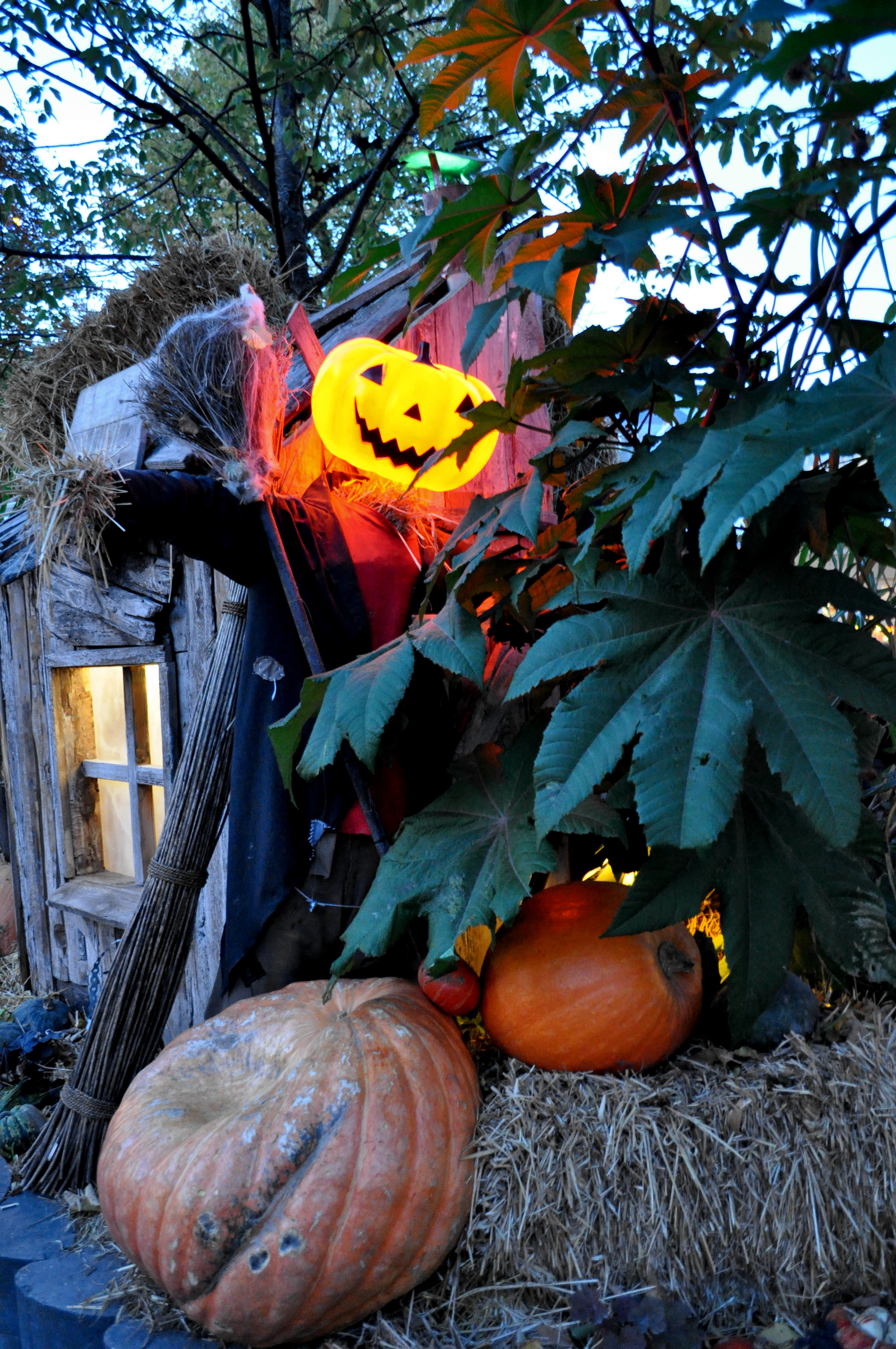 Jennifer Michie Halloween 2015